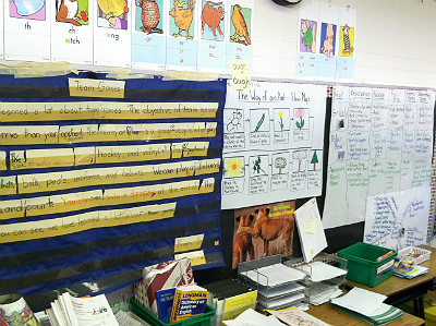 language rich environment classroom