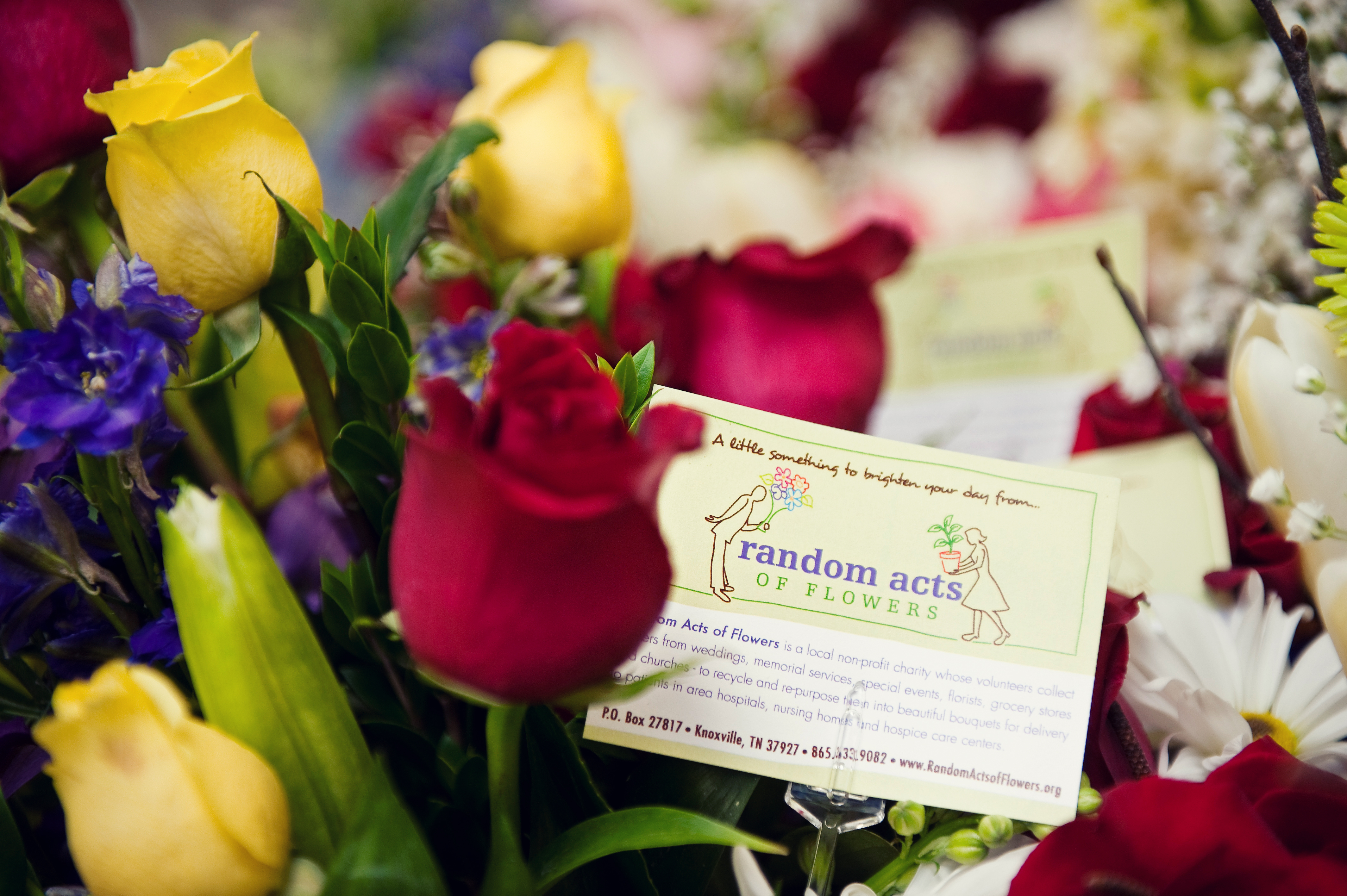 Founded in 2008 the Knoxville Tenn based nonprofit Random Acts of Flowers