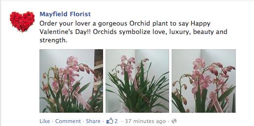Mayfield florist tucson ariz for Log cabin florist bakersfield